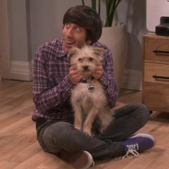 Howard found a dog in the backyard.