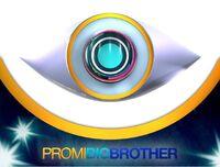 PromiBigBrother4