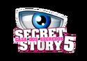 SS5Por-Logo