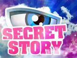 Secret Story France 9