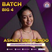 PBB8 Ashley Batch 3 Big 4 Finalist