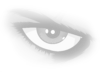 BBCAN 8 Eye