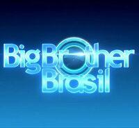 Big Brother Brazil Logo 4