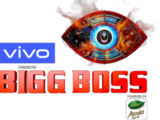 Bigg Boss 13 (Hindi)