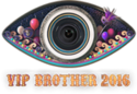 VIP Brother 8