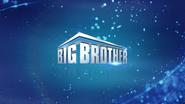 BBUS Logo 2020