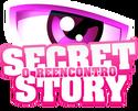 Secret story-o reencontro