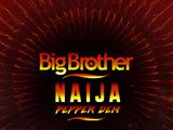 Big Brother Nigeria 4