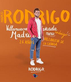 Rodrigo Spain17Large
