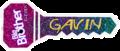 GavinBB11Key