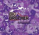 Big Brother Pokemon Wikia