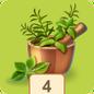 Herbs4