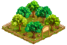 Orchard7-1-