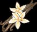 Vanille-icon