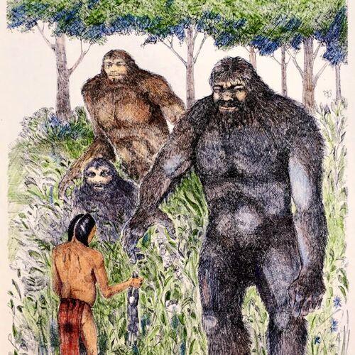 American Bigfoot
