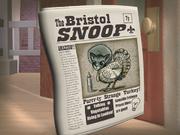 TheBristolSnoop1