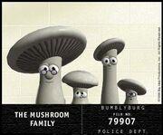 LB shrooms