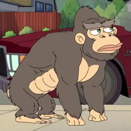 Rebecca the Monkey