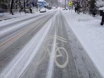 SnowSharrows