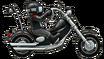 Hog Bike