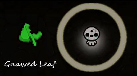 The bending of isaac Rebirth. DLC Afterbirth.(Gnawed leaf)
