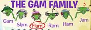 Families gam flam