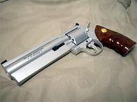 Resident Evil 1 Magnum