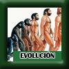 Evolucion icono