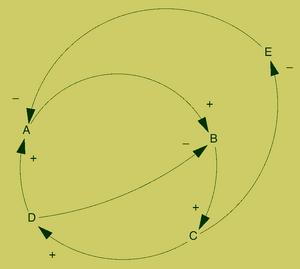 Simple feedback loops