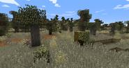 Brushland 1.9