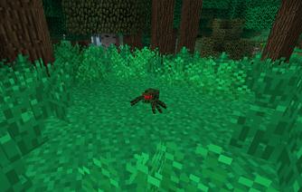 JungleSpider