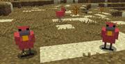 Rosester 1.6.4