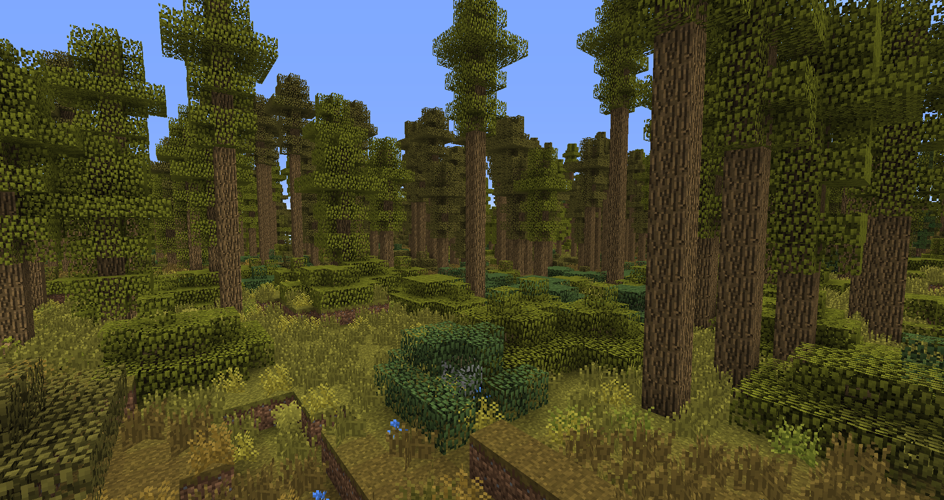 Image - Deciduous-Forest.png   Biomes O' Plenty Wiki ...