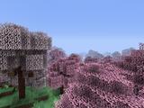Cherry Blossom Grove