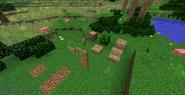 Eucalyptus Wood All