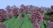 CherryBlossomGrove04