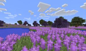 LavenderFieldsSilty