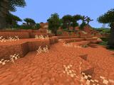 Lush Desert