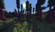 RedwoodShader