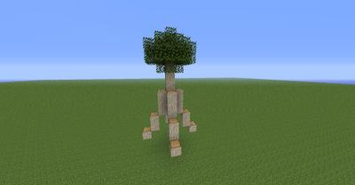 MangroveTree02