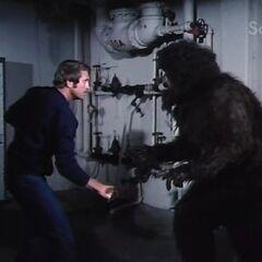 Steve takes on Bigfoot