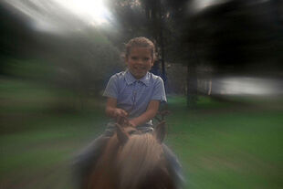 JamiesMother youngjaime horse