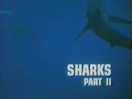 Sharks Part II
