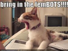 Bring in the Fembots small
