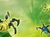 Arañas Calavera
