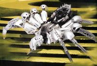 Rahi Silver Chute Spider
