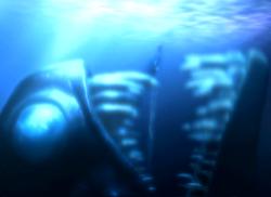 LoMN Dweller in the Deep