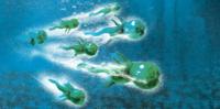 CGI Green Squid