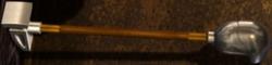 MdlL Palo Kohlii