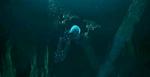 Nokama Mini-Película